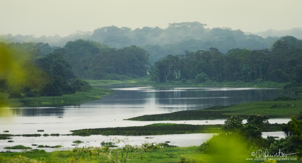 gamoba-paisaje2